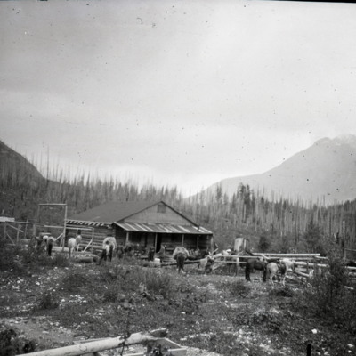 Donald Phillips ranch near Robson