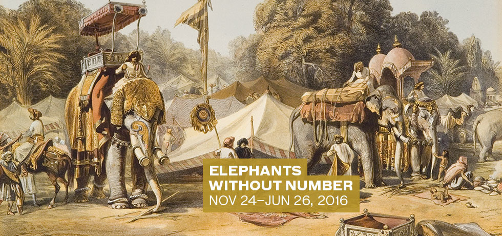 2372-15_exhibition_index_page_elephants_without_number_v1