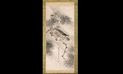 Kite in rain