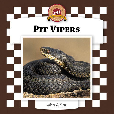 Pit Vipers