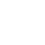 Blogging 101: Create a WordPress Blog