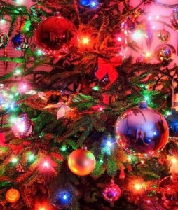Free Pictures | acobox.com