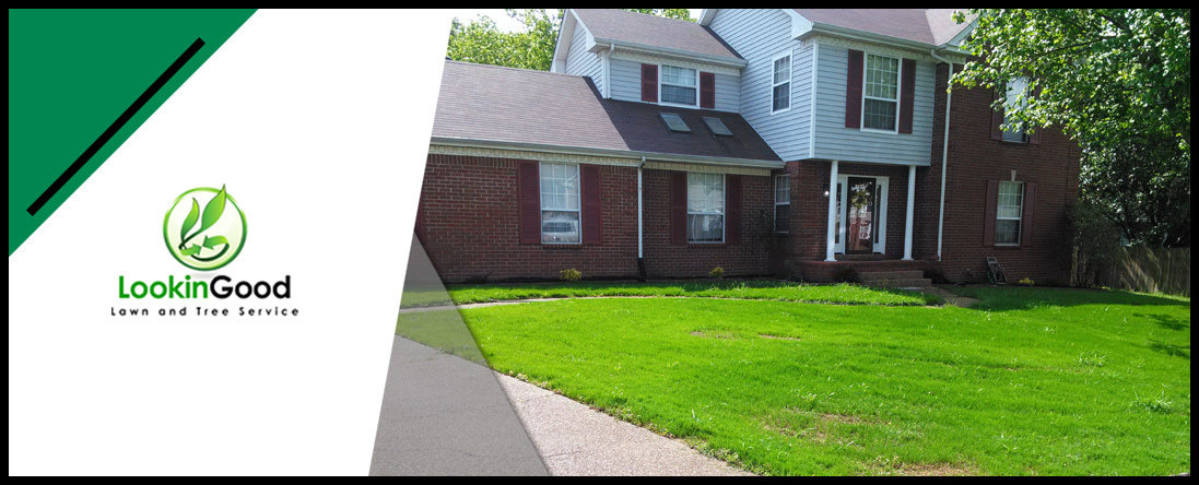 Lookin Good Lawn and Tree Service Offers Landscaping in Nashville, TN