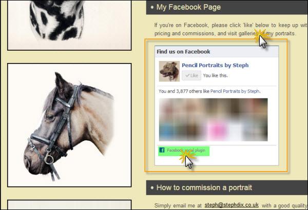 FB social plugins