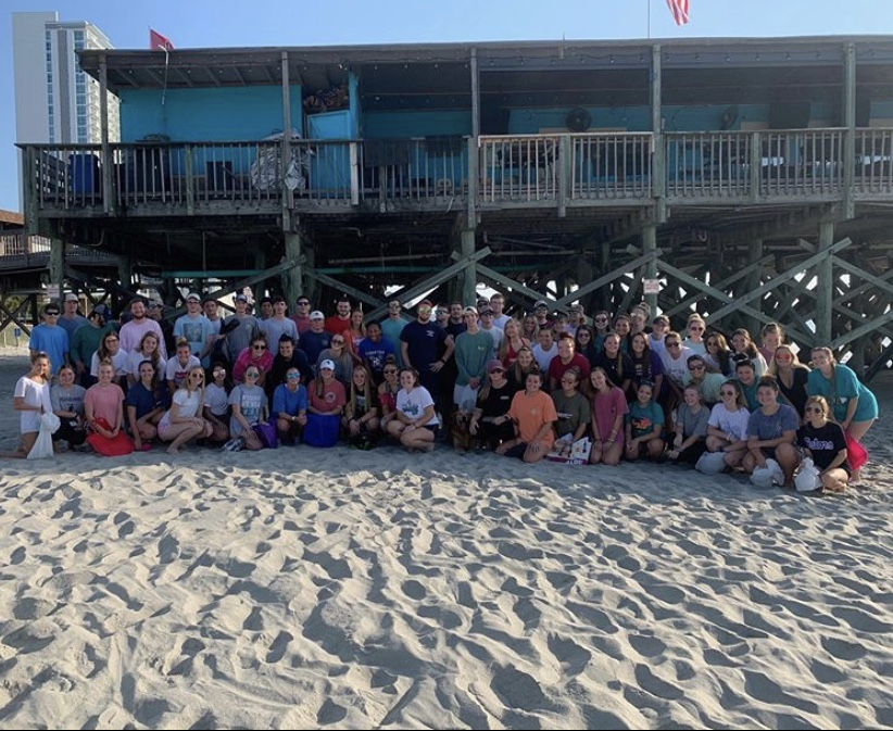 Beach and Highway Cleanups