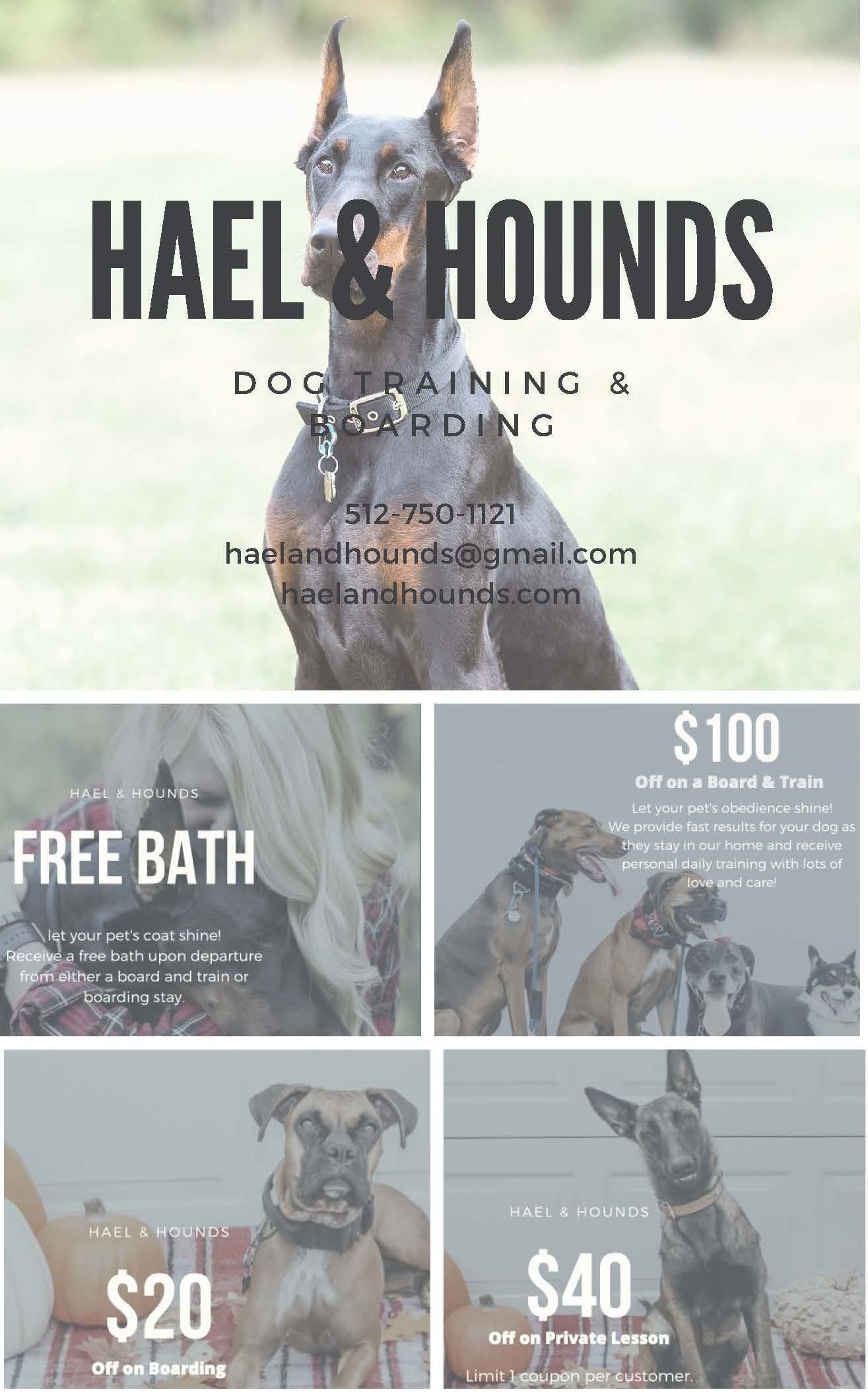 Hael & Hound Dog Training