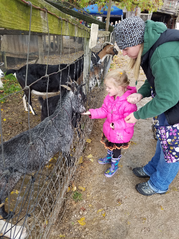 Little Farmer Orchard Outing October 2017