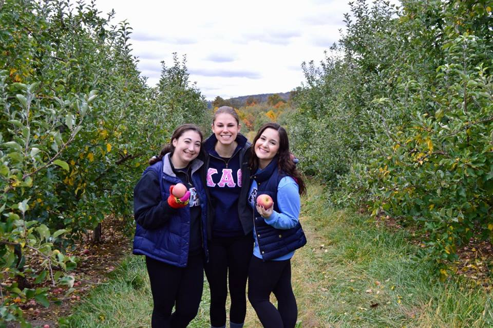 Apple Gleaning for Day of Service 2016