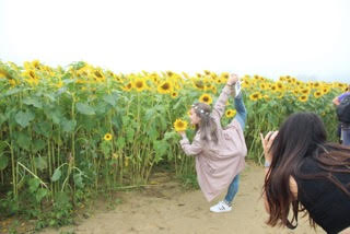 Sunflower Farm Outing 2017