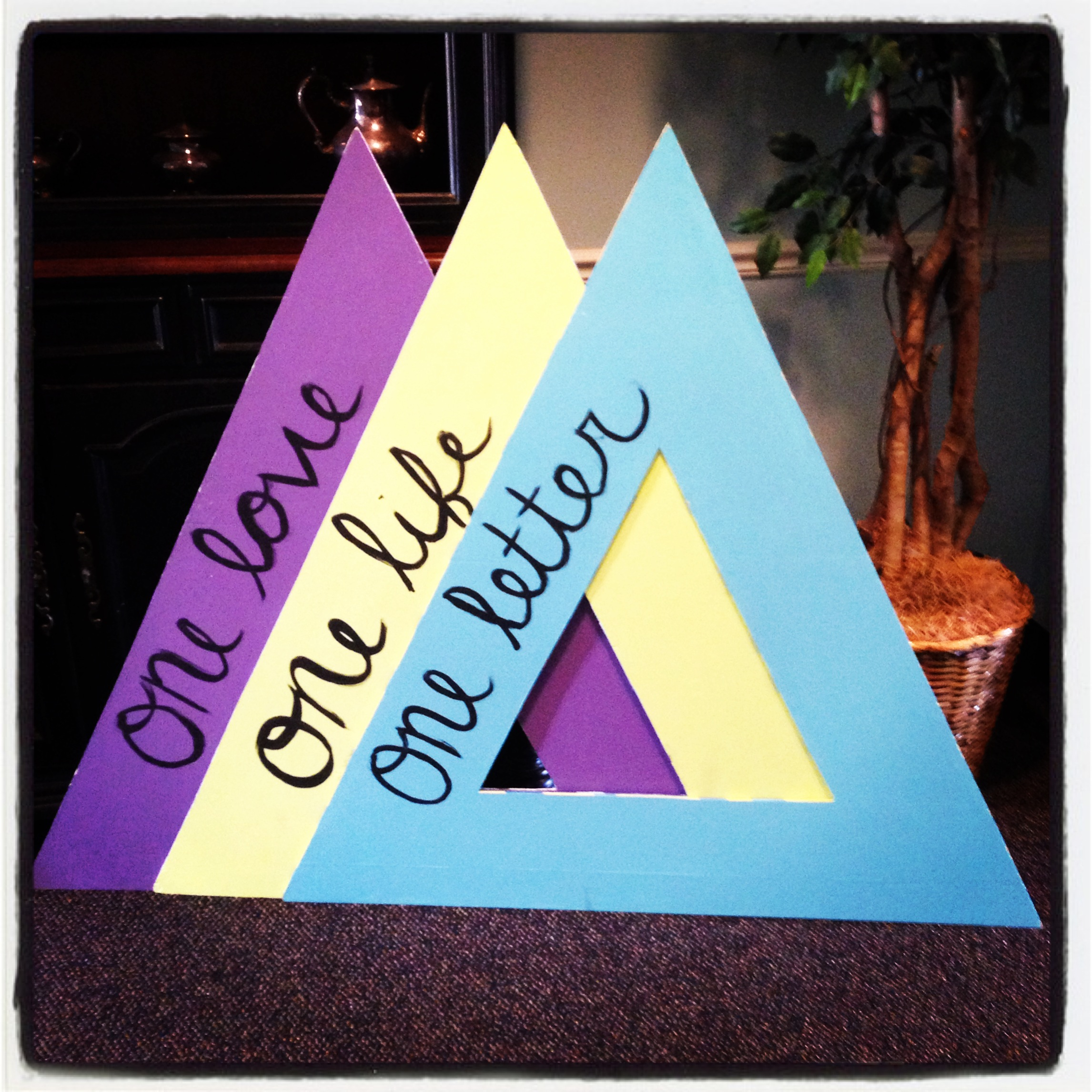 Fall 2013 Recruitment & Bid Day