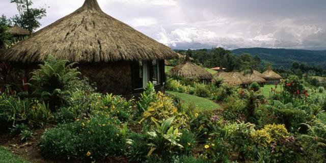 Yeni Gine