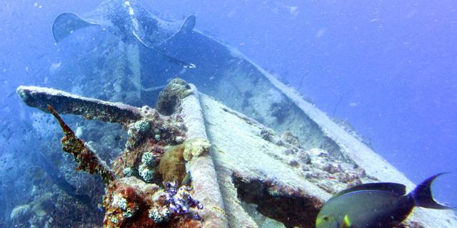 SS Yongala Batığı