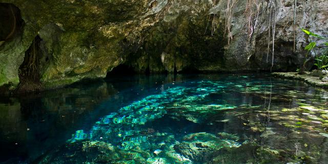 Gran Cenote Mağarası