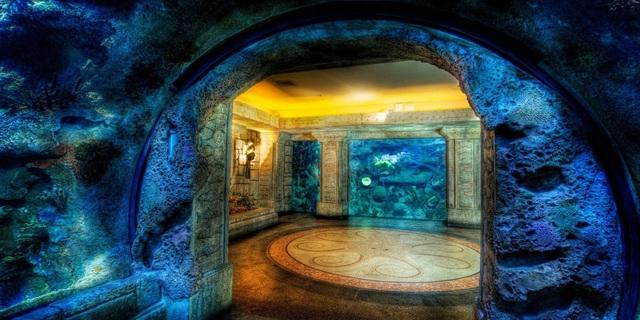 Teknik olarak burası da bir sualtı mağarası: Mandalay Bay Köpekbalığı Resifi