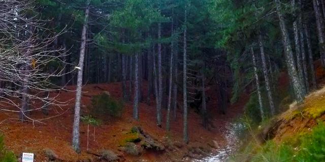 Ege Bölgesi'nin zirvelerinde kamp ve yürüyüş vakti