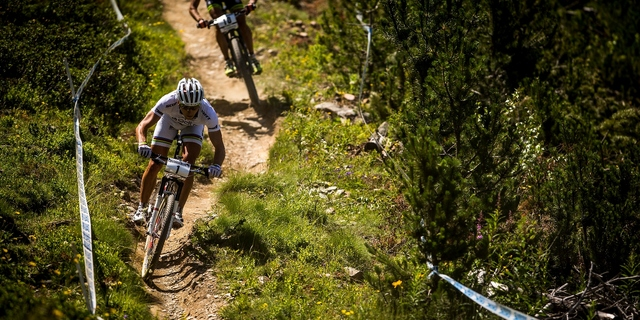 Uluslararası Bisiklet Birliği (UCI) günümüzde birçok ana akımda ulusal ve uluslararası yarışlar düzenliyor.
