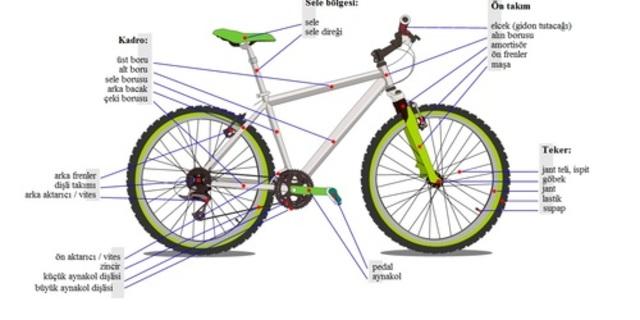 Bilmeyenler için Şekil 1A'da bisikletin anatomisi