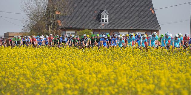 Avrupa'da bisiklet sezonu mart ayında başlıyor