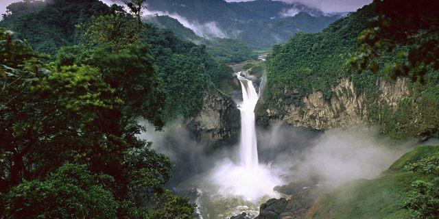 Yossi'nin kaybolduğu Bolivya yağmur ormanları