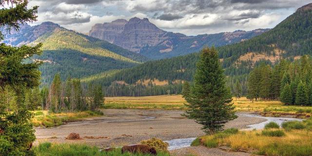 Yellowstone Doğal Parkı
