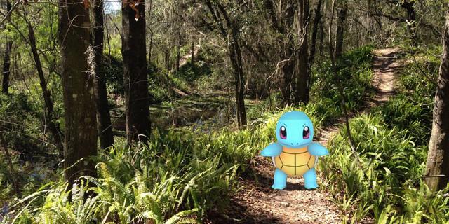 Hiking yaparken Squirtle'a rastlayabilirsiniz