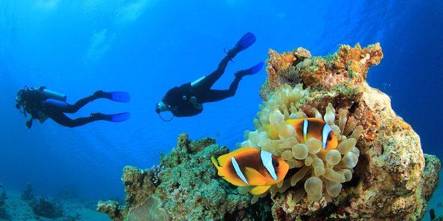Bodrum diving fest - 45