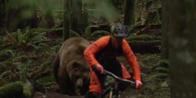 Dağ bisikletçileri ayılarla karşılaşırsa!