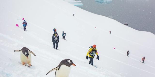 Buzdan çöl: Antarktika