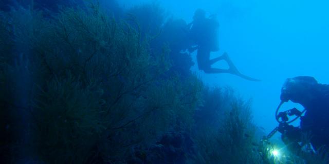 Su altında depreme yakalanmak