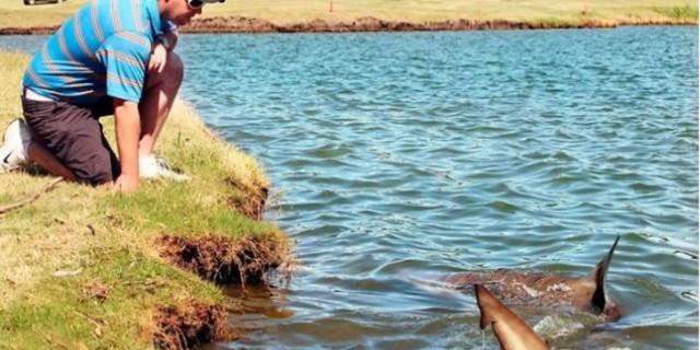 Köpekbalığı Gölü
