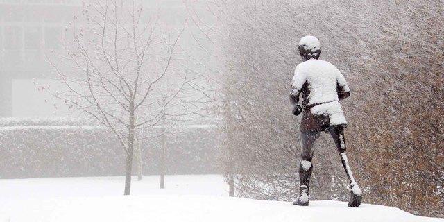 Ontario, Kanada'daki Terry Fox heykeli.