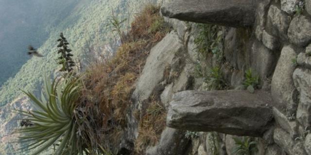 Huayna Picchu parkuru boyunca görülen zorlu taş basamaklar