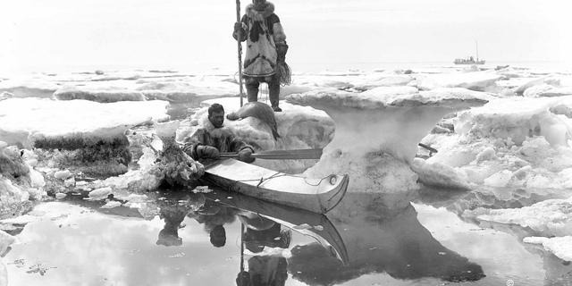 İki avcı fok avında