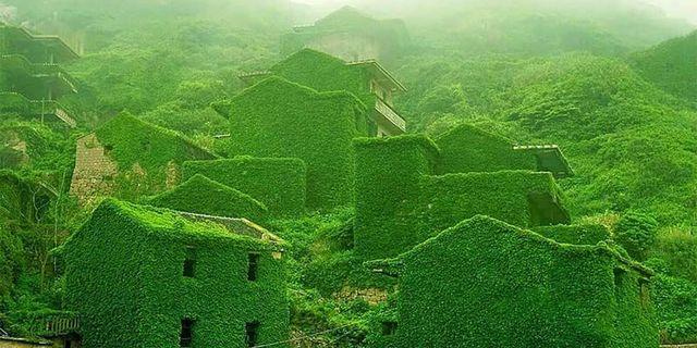 Doğanın bütün zarafetiyle ele geçirdiği Shengsi Köyü