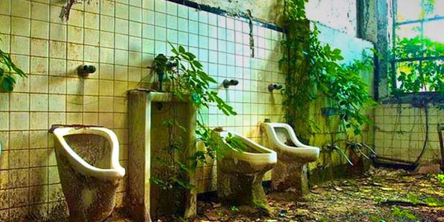Doğa tuvaletleri de ele geçirebilir