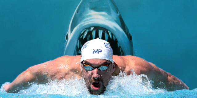 Michael Phelps vs. Büyük beyaz köpekbalığı!
