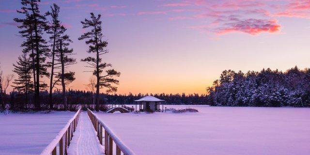 Beyaz Çam Kampı