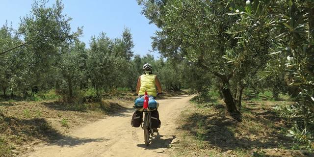 Guney marmara sahlleri karacabey longozu karadag bisiklet turu - 7530