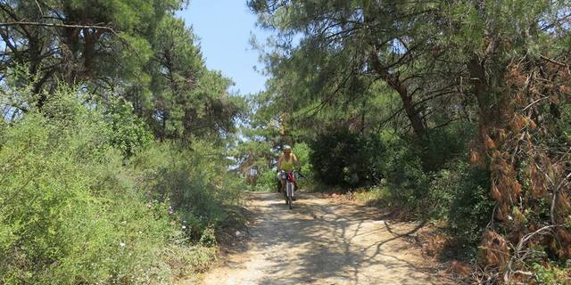 Guney marmara sahlleri karacabey longozu karadag bisiklet turu - 7531