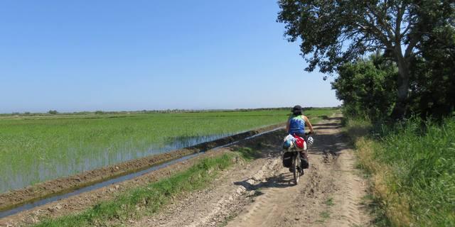 Guney marmara sahlleri karacabey longozu karadag bisiklet turu - 7544