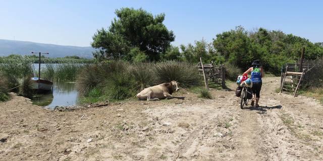 Guney marmara sahlleri karacabey longozu karadag bisiklet turu - 7546