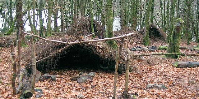Karşınızda ideal bir orman evi