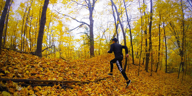 Ormanda koşarsanız, bambaşka birisi olursunuz