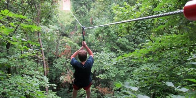 Tree Top Macera Parkı'nda sıradan bir gün