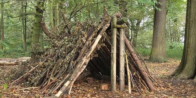 İlk bushcraft deneyiminizde böyle profesyonel bir barınak hayal etmeyin…
