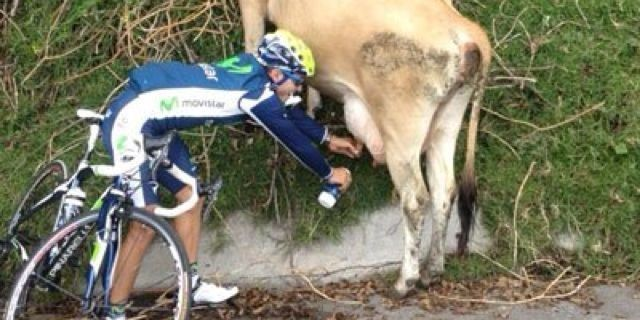 Süt, bisikletçilere faydalı mı?