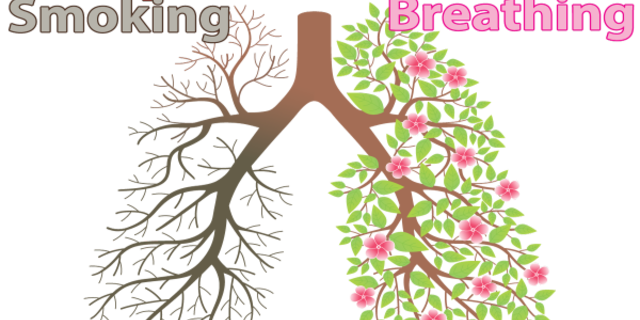 Sigara hem bütçeye hem sağlığa zarar