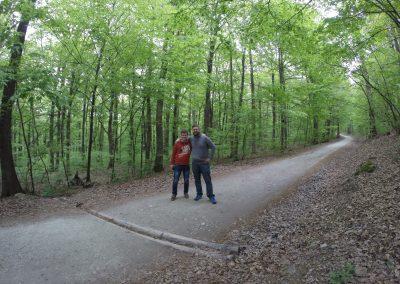 Slovakia - The Path