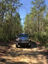 Ocala National Forest - Toyota Tundra