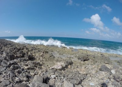 Aruba Ocean in West Punt